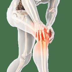 knee pain joint orthopedic physical therapy Banu Acan DPT Core Revitalizing Center Sarasota Bradenton ankle wrist hip